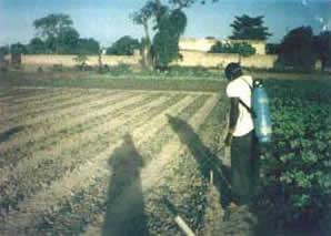 Burkina10
