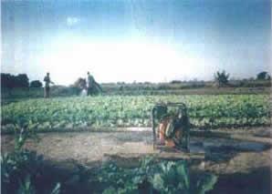 Burkina9